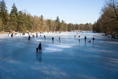 Icy lake in the forest — Stock Photo