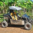 Buggy on the track of Tropical — Stock Photo #9782343