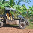 Buggy on the track of Tropical — Stock Photo