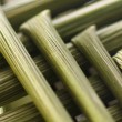 Macro wheat stem — Stock Photo #10038922