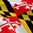 Marylander flag in the wind — Stok fotoğraf