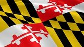 Marylander flag in the wind — Stock Photo