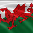 Welsh flag in the wind — Stock Photo
