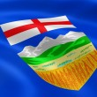 Albertan flag in the wind — Stock Photo
