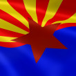 Arizonan flag in the wind — 图库照片