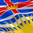 British Columbian flag in the wind - Stock Photo