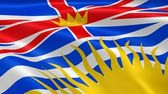 British Columbian flag in the wind — Stock Photo