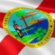 Floridian flag in the wind - Stock Photo