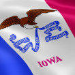 Iowan flag in the wind - Stock Photo