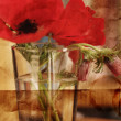Red spring flowers in a glass — Stock Photo
