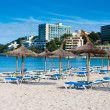 Stock Photo: Beach loungers and umbrellas on beach. Spain, PalmMallorca