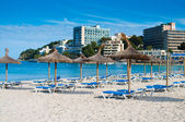 Beach loungers and umbrellas on the beach. Spain, Palma Mallorca — Fotografia Stock