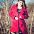 Stock Photo: Brunette woman in red coat with underwear outdoor