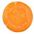 Carrot cut in slices — Stock Photo #9977661