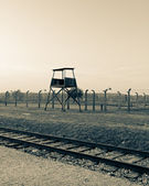 Auschwitz'de saat kulesi — Stok fotoğraf