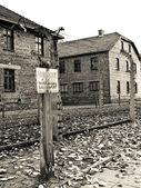 Auschwitz alert — Stock Photo