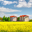 Stock Photo: Apartment buildings at spring