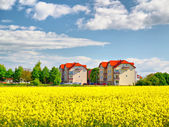 Apartment buildings at spring — Stock Photo