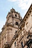 Cathedral in Salamanca — Zdjęcie stockowe