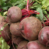 Beet in a market — Stock Photo