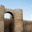 Puerta del Alcazar — Stock Photo