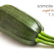 Zucchini — Stock Photo