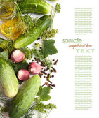 Pickling cucumbers and spices — Stock Photo