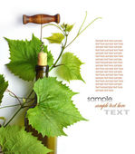 Corkscrew and cork — Stock Photo