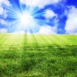 Sunny landscape - Stock Photo