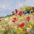 Painted poppies on summer meadow — Stock fotografie #8888995
