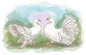 Пара голубей. — Cтоковый вектор
