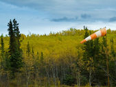 Fall colored taiga and full wind cone on windy day — Stock Photo