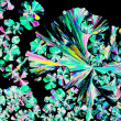 Stock Photo: Citric acid crystals in polarized light