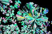 Citric acid crystals in polarized light — Stock Photo