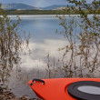 Kayak on shore in the willows alongside a lake — Stock Photo #10449294