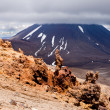 Lava sculptures and volcanoe Mount Ngauruhoe, NZ — Stockfoto