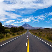 Road leading to active volcanoe Mt Ngauruhoe, NZ — Stock Photo