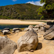 Granite boulders in Abel Tasman NP, New Zealand - Stok fotoğraf