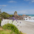 Tasman Sea at West Coast of South Island of NZ — Stock Photo