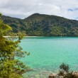 Tranquil bay in Abel Tasman NP, New Zealand — Stock Photo