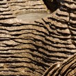 Stock Photo: Background of Pancake Rocks of Punakaiki, NZ