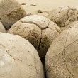 Stock Photo: Closeup of famous spherical Moeraki Boulders, NZ