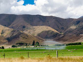Irrigating lush farm pastures in central Otago, NZ — Stock Photo