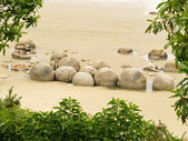 Famous NZ travel destination of Moeraki Boulders — Stock Photo