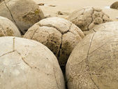Closeup of famous spherical Moeraki Boulders, NZ — Stock Photo