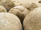 Closeup of famous spherical Moeraki Boulders, NZ — Stock Photo