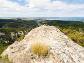 Rocky outcrops of Trotters Gorge, Otago, NZ — Stock Photo