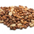 Nuts background — Stock fotografie #8333627
