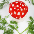 Egg - a fly agaric — Stock Photo