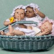 Three Baby in Basket — Stock Photo